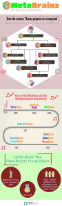 MetaBrainz infographic by Soh Xin Yi